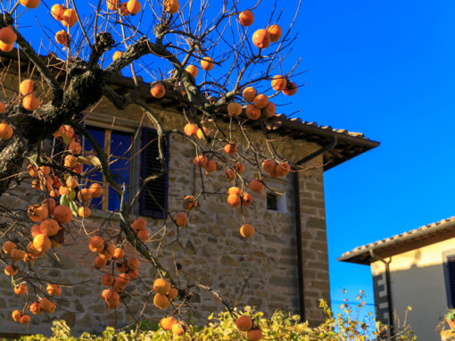 Casa Due Palchi, a romantic stay